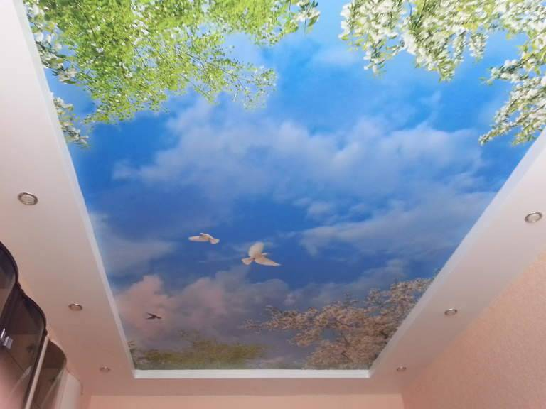 Натяжные потолки с фотопечатью: виды, идеи дизайна, рисунки (природа, цветы, животные и др), освещение