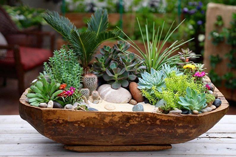 Мини-сады: особенности, выбор композиции и создание садика из кактусов и суккулентов своими руками
