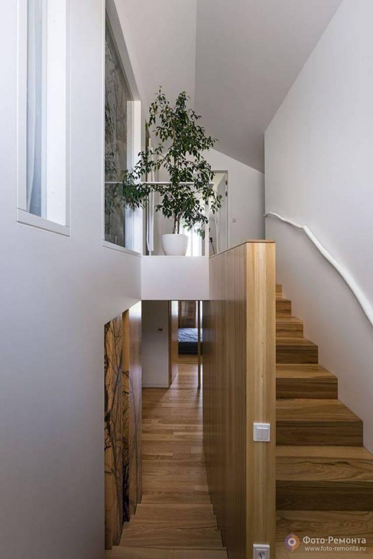 Лестницы в интерьере – сделайте лестницу гордостью интерьера своего дома