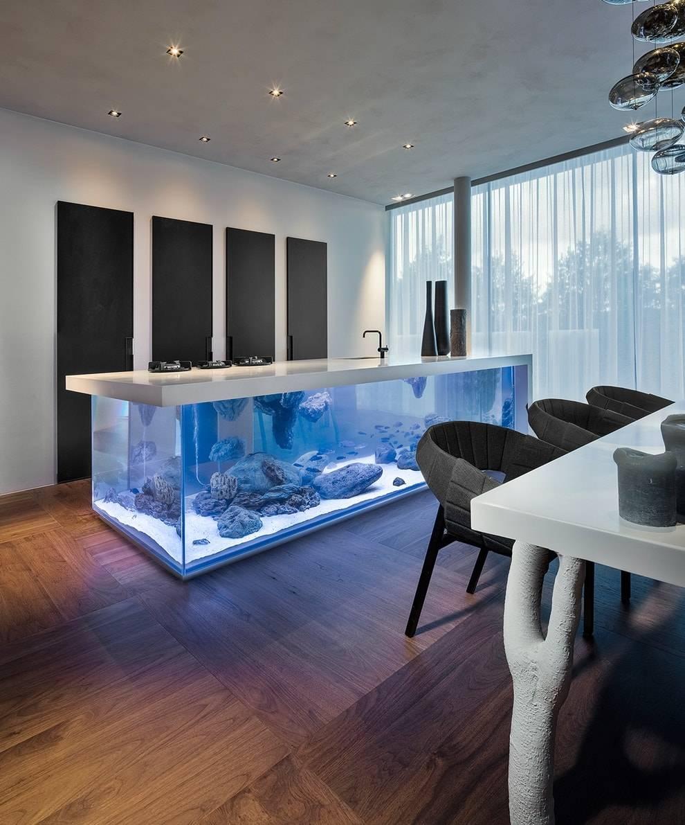 Аквариумы в стене (35 фото): встроенный плоский аквариум между комнатами, подвесной тонкий аквариум в нише и другие варианты. их дизайн