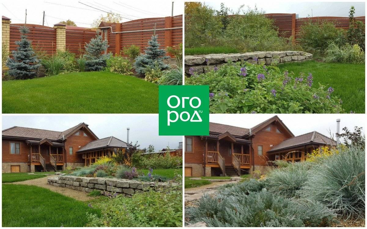 Благоустройство участка: примеры озеленения и оформления загородного участка (150 фото)
