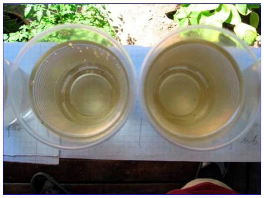 Запах сероводорода у воды из скважины, что делать?