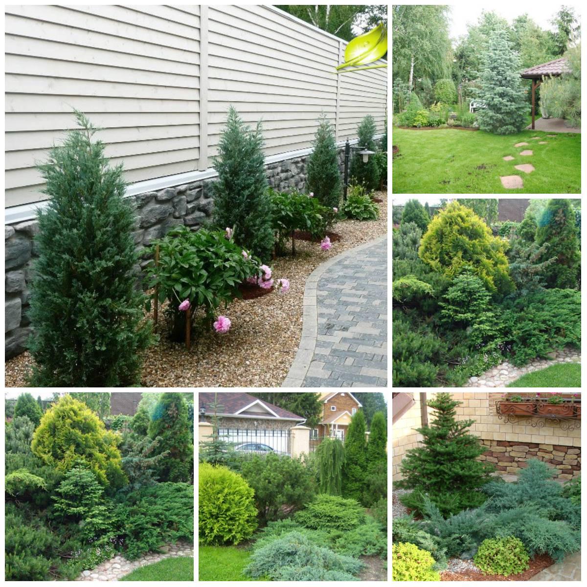 Ландшафтный дизайн маленького сада (46 фото): готовые композиции для небольшого участка, садик своими руками