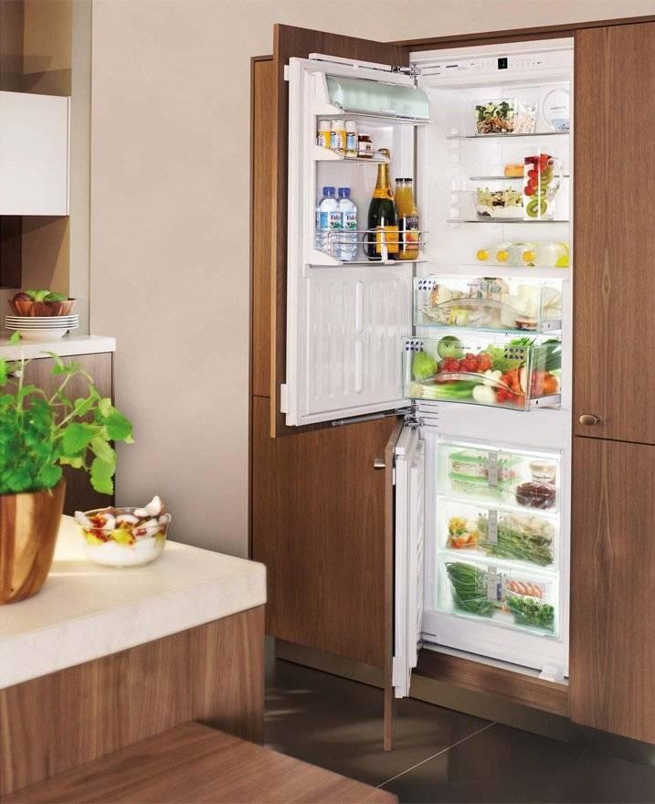 Чем встраиваемый холодильник отличается от обычного, можно ли встроить обычную модель