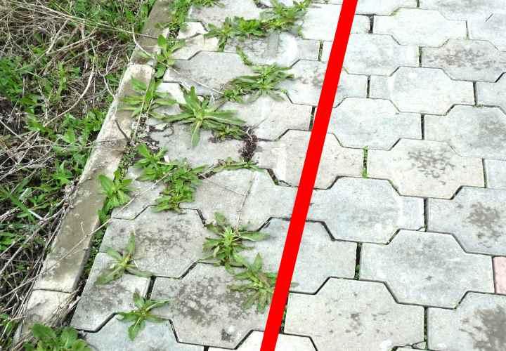 Как легко избавиться от травы на садовых дорожках навсегда!