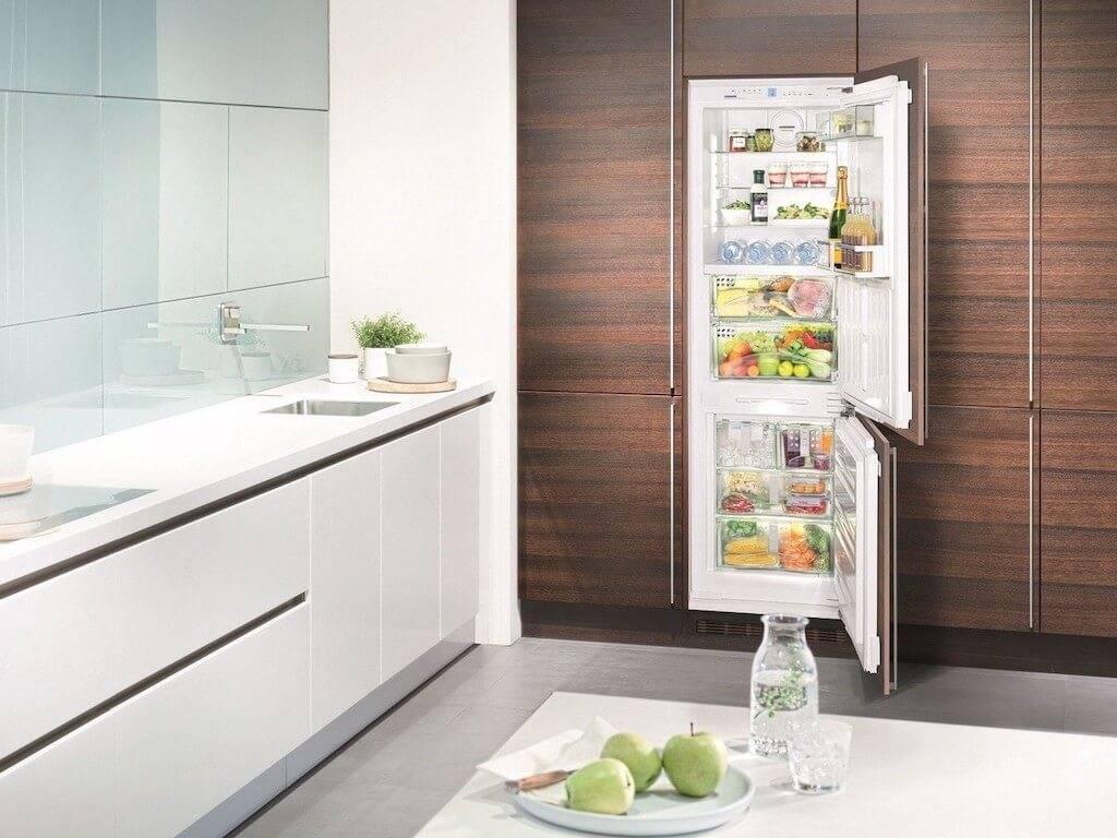 Как выбрать холодильник: параметры выбора, советы эксперта