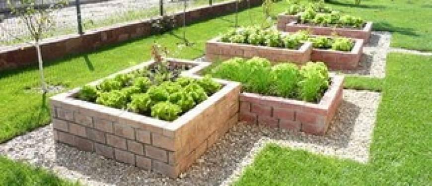 Огород в горшках: как создать, что садить, плюсы и минусы | огородники