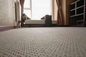 7 советов по выбору ковролина