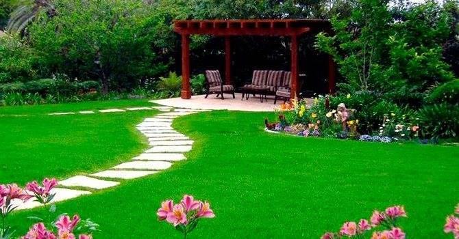 Как выбрать лучший рулонный газон: объясняем основательно