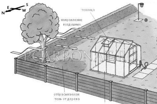 Как правильно расположить теплицу на участке по сторонам света? | строительство и ремонт