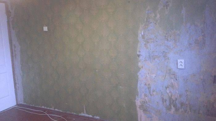 Перламутровая краска для стен: загадочное сияние (23 фото)