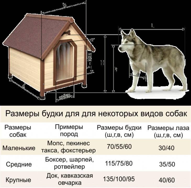 Будка для собаки своими руками - размеры, чертежи, схемы, фото | стройсоветы