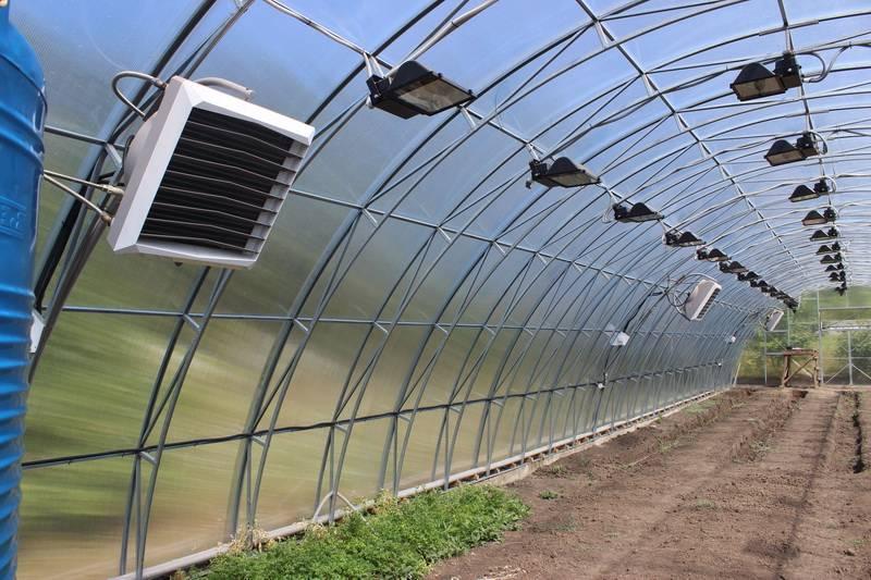 Инфракрасные обогреватели для теплицы из поликарбоната: способы отопления зимней теплицы, как обогреть парник весной и чем лучше отапливать зимой