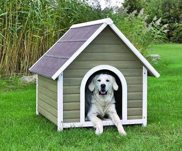 Будка для собаки своими руками: чертежи с размерами