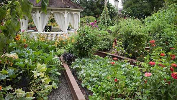 Как оформить красивый огород своими руками: планировка, виды оформления и дизайн красивых грядок для ленивых