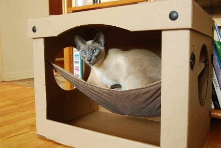 Как сделать домик для кошки из коробки своими руками: чертежи, размеры и инструкция поэтапно - Обзор