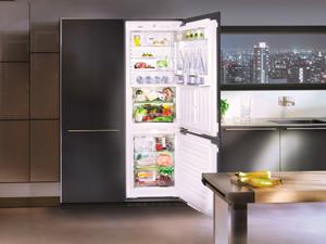 Встраиваемый холодильник - подбор дизайна и размещение (100 фото)