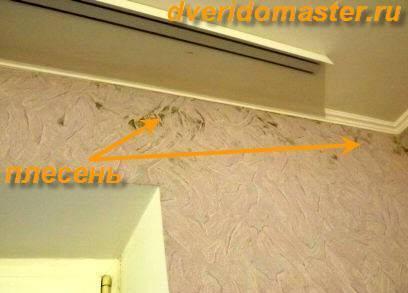 Конденсат на окнах – причины возникновения и как остановить переход пара в жидкость (95 фото) – строительный портал – strojka-gid.ru