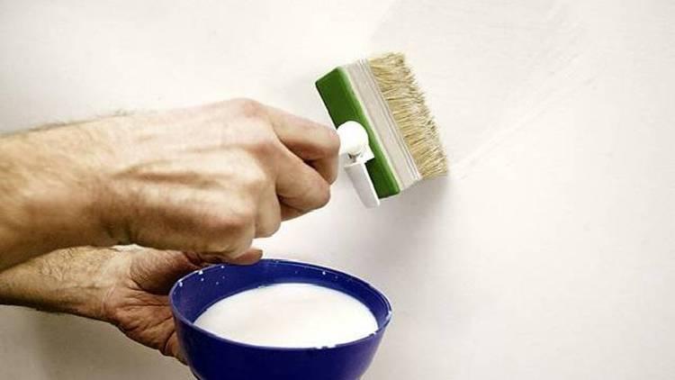 Грунтовка для стен под обои: нужно ли обязательно грунтовать перед поклейкой