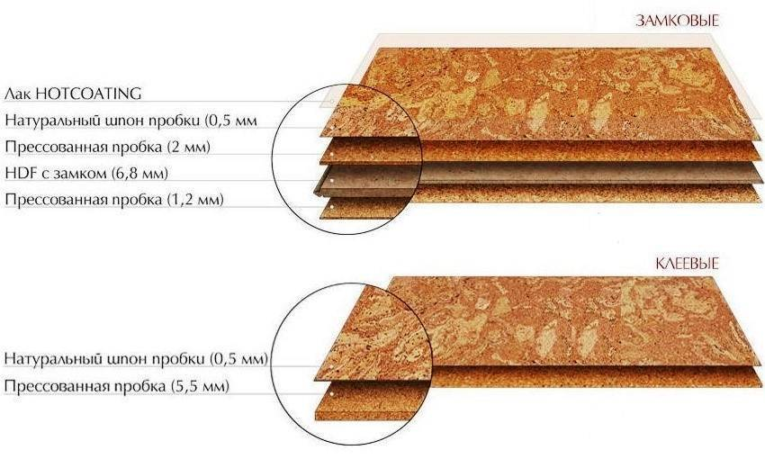 Пробковый пол: детальный обзор напольного покрытия, укладка пробкового пола, фото пробки в интерьере