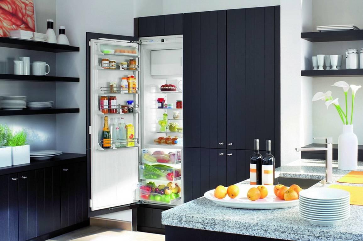Встраиваемый холодильник: рейтинг лучших моделей