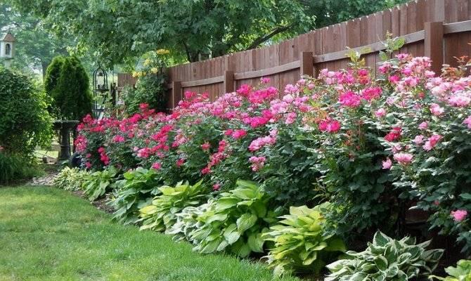 Красивый палисадник – как оформить придомовую территорию?