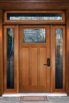 Алюминиевые двери (61 фото): глухие теплые входные двери из алюминиевого профиля для частного дома, конструкции со стеклом, распашные системы открывания
