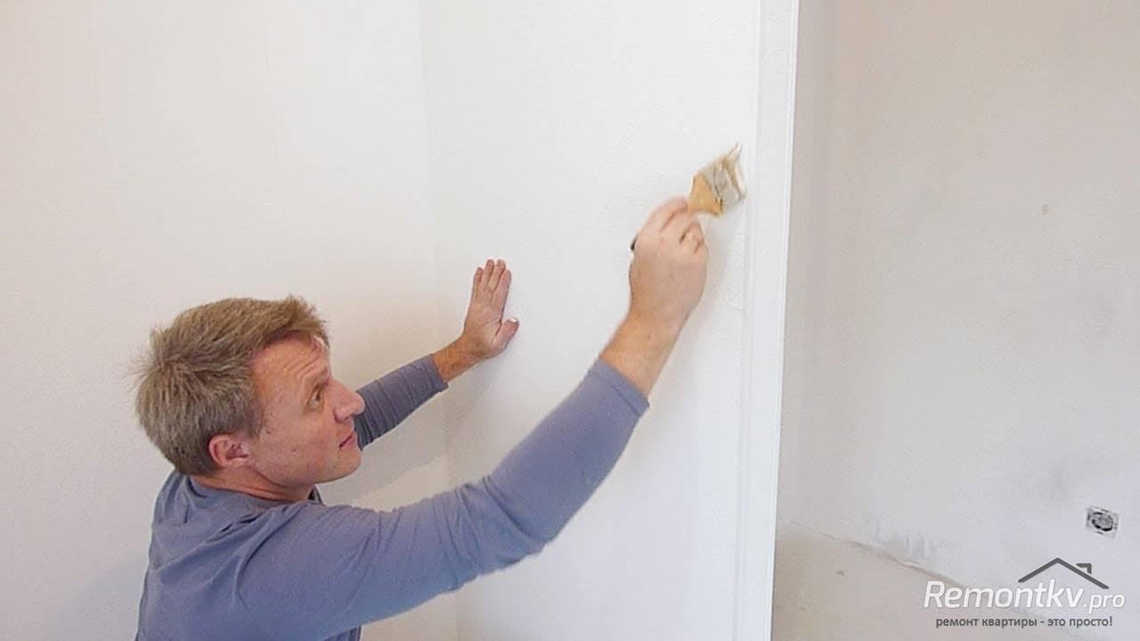 Перламутровая краска для стен: особенности и применение