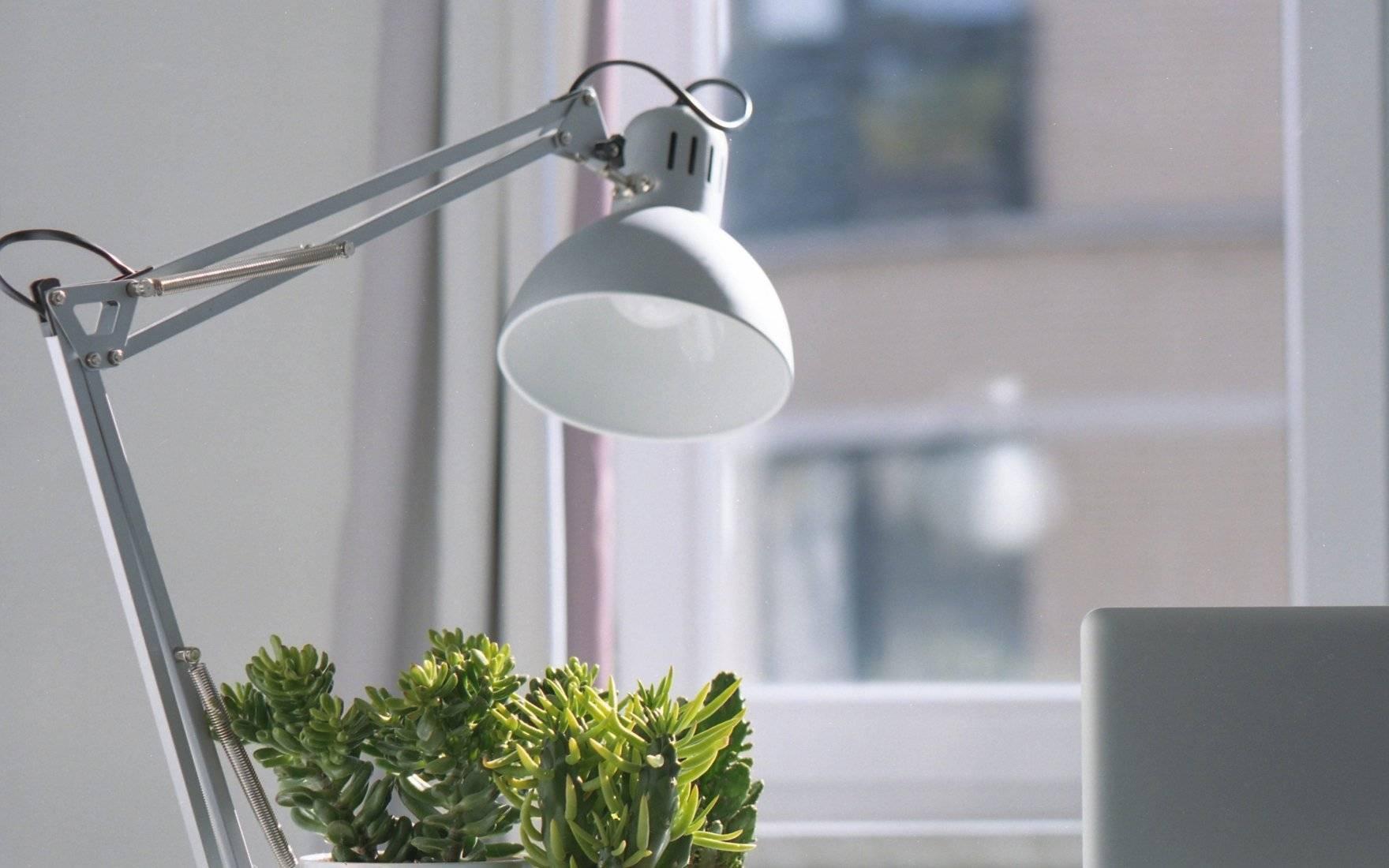 Лучшие настольные лампы для школьников