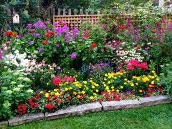 Цветники и клумбы своими руками на даче: фото, цветущее всё лето цветники и клумбы своими руками на даче: фото, цветущее всё лето