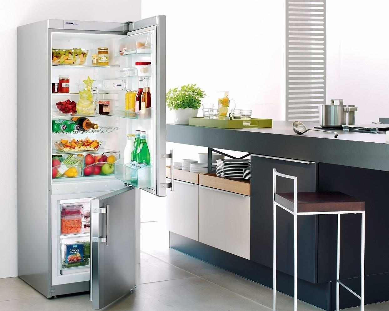 6 лучших холодильников бирюса