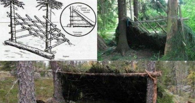 Как построить шалаш в лесу зимой: их виды и фото