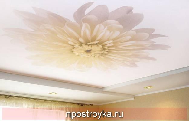 Двухцветные кухни (48 фото): стильные идеи дизайна кухни с сочетанием двух цветов. использование натяжных потолков, выбор обоев и двухцветного кухонного гарнитура