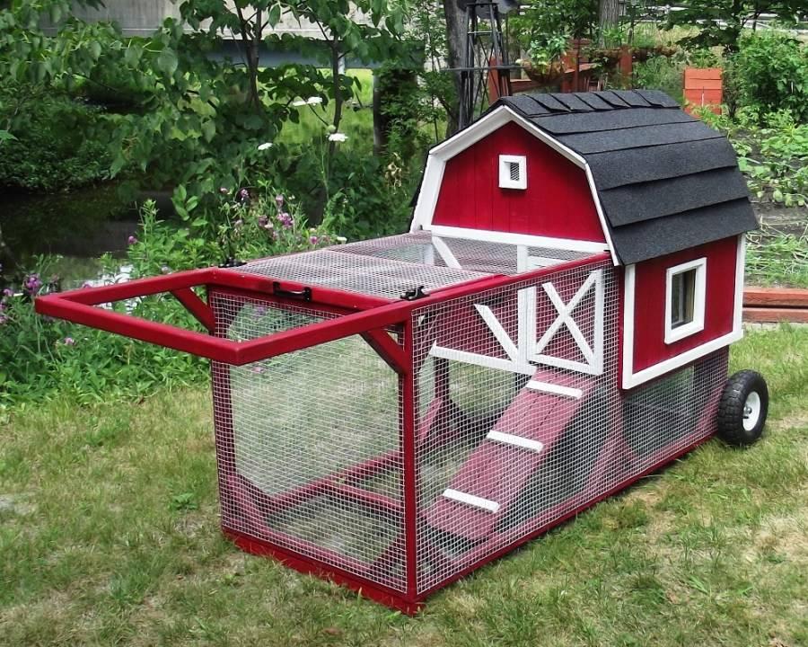 Строительство курятника для дачи: как и из чего построить летний и зимний курятник (105 фото и видео)