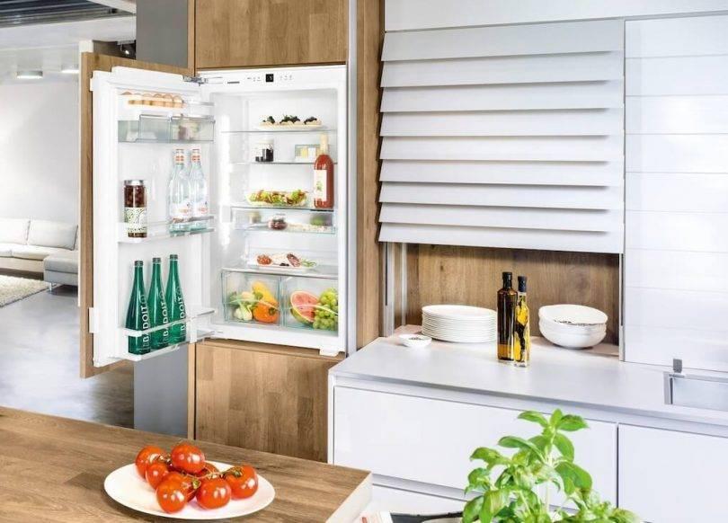 Топ-9 лучших встраиваемых холодильников – рейтинг 2021 года