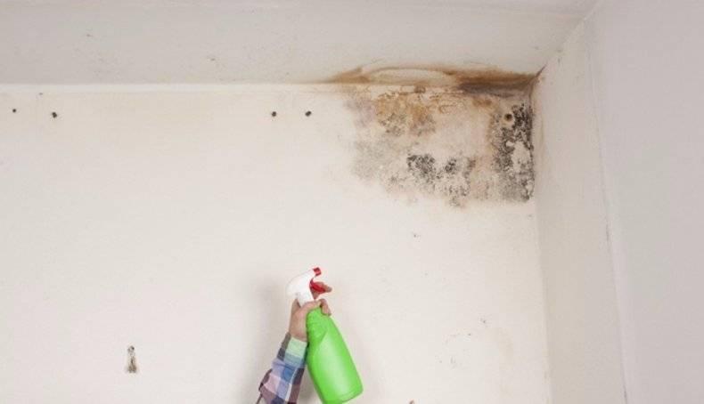 Как отмыть побелку после ремонта с пола, стен и потолка