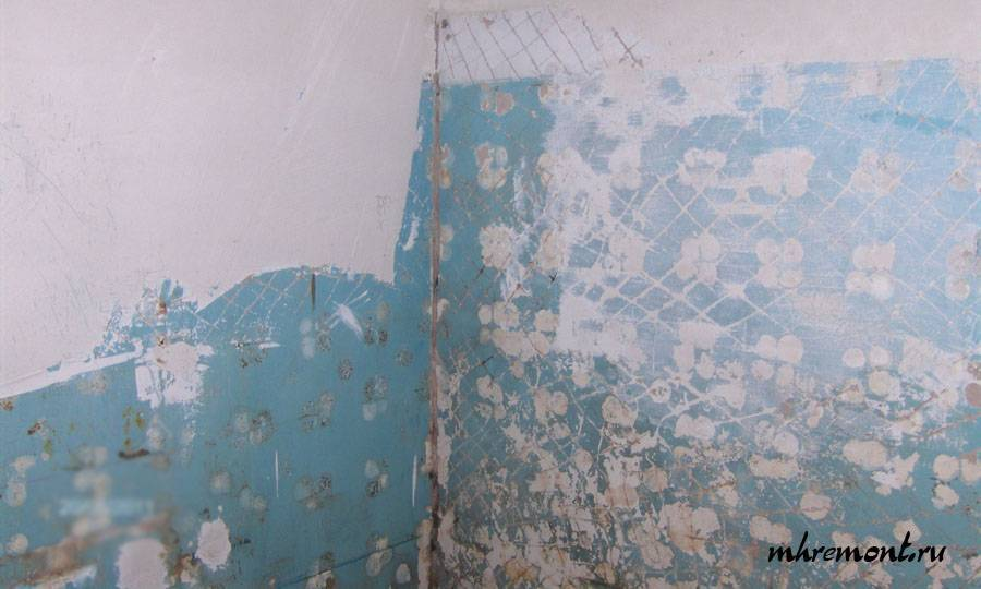 Можно ли наносить штукатурку на краску: как штукатурить крашеные стены по старой масляной и водоэмульсионной основе, будет ли держаться гипсовая смесь поверх окраски, если класть на бетоноконтакт, а также способы снять покраску