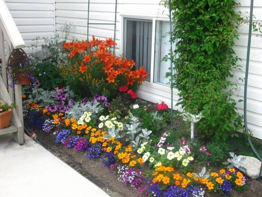 Цветники на даче своими руками - 10 лучших вариантов!