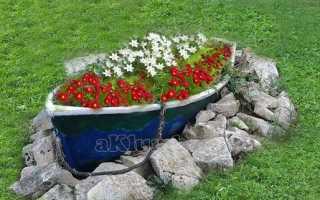 Цветы для клумбы (144 фото): названия популярных осенних растений, цветники с лаватерой, розой и декоративной травой, какие виды растут в тени