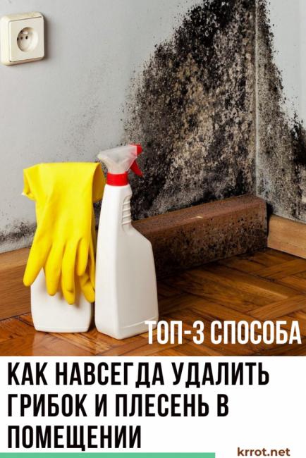 Боремся с плесенью в квартире на стенах: 7 народных средств