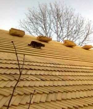 Экокровля: деревянная черепица для крыши