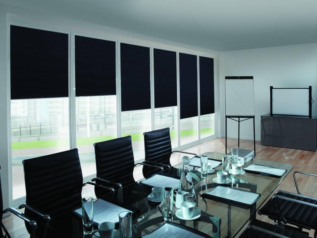 Шторы в кабинет (26 фото): занавески для частного дома и квартиры, подходящие модели