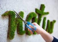 Поделки из мха и природных материалов своими руками: цветы из шишек, другие мастер-классы