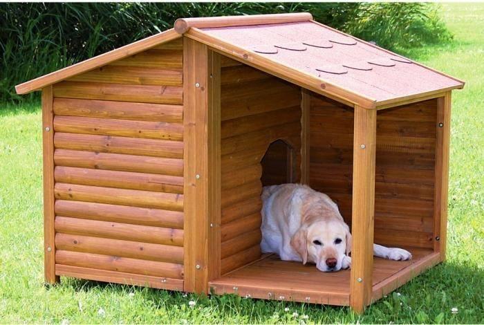 Будка для собаки: виды, размеры, расположение, материалы для строительства, технология сооружения