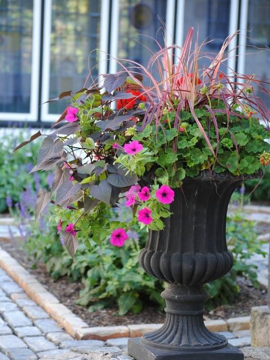 Уличные вазоны для цветов. советы по выбору и изготовлению своими руками (60 фото)