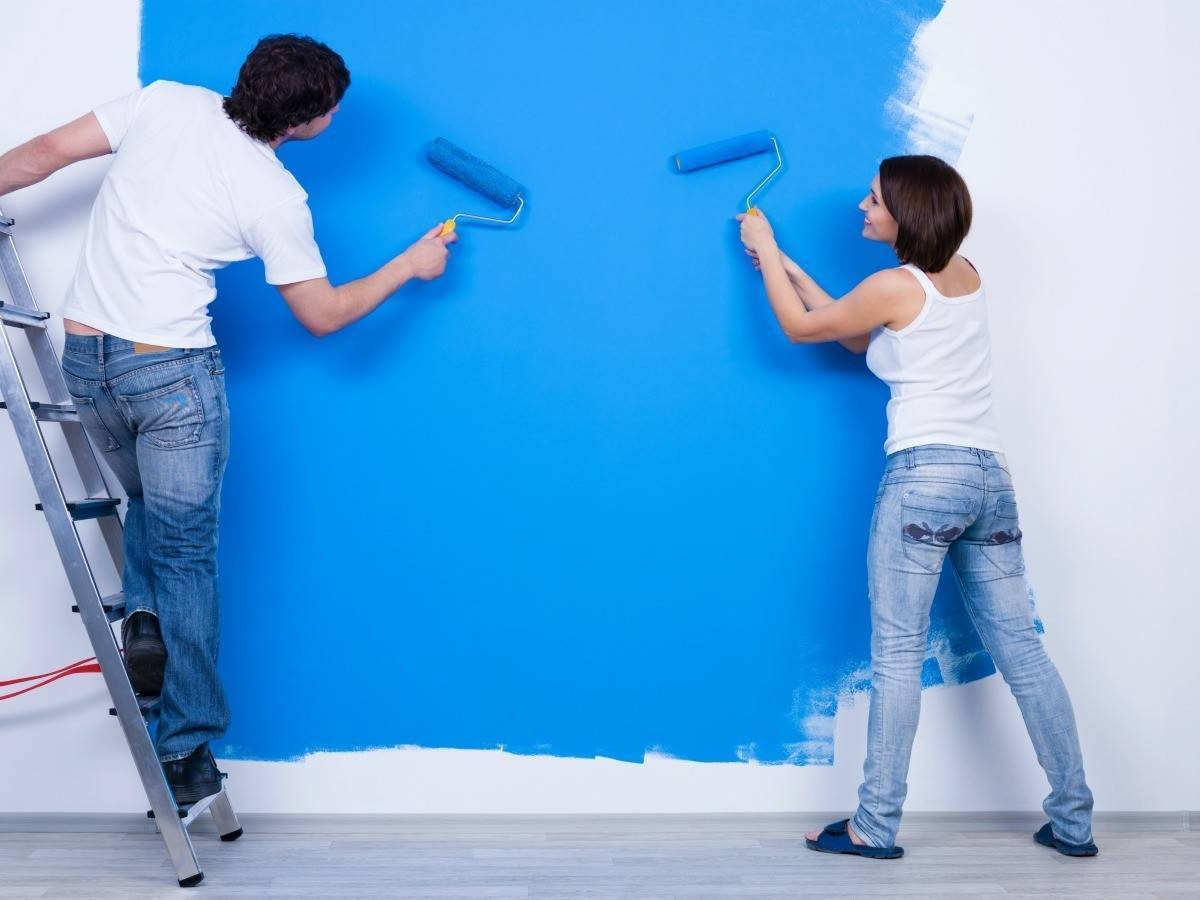 Особенности вододисперсионной краски — что это такое