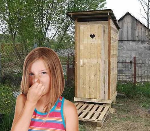 Средство от запаха в дачном туалете: способы избавления