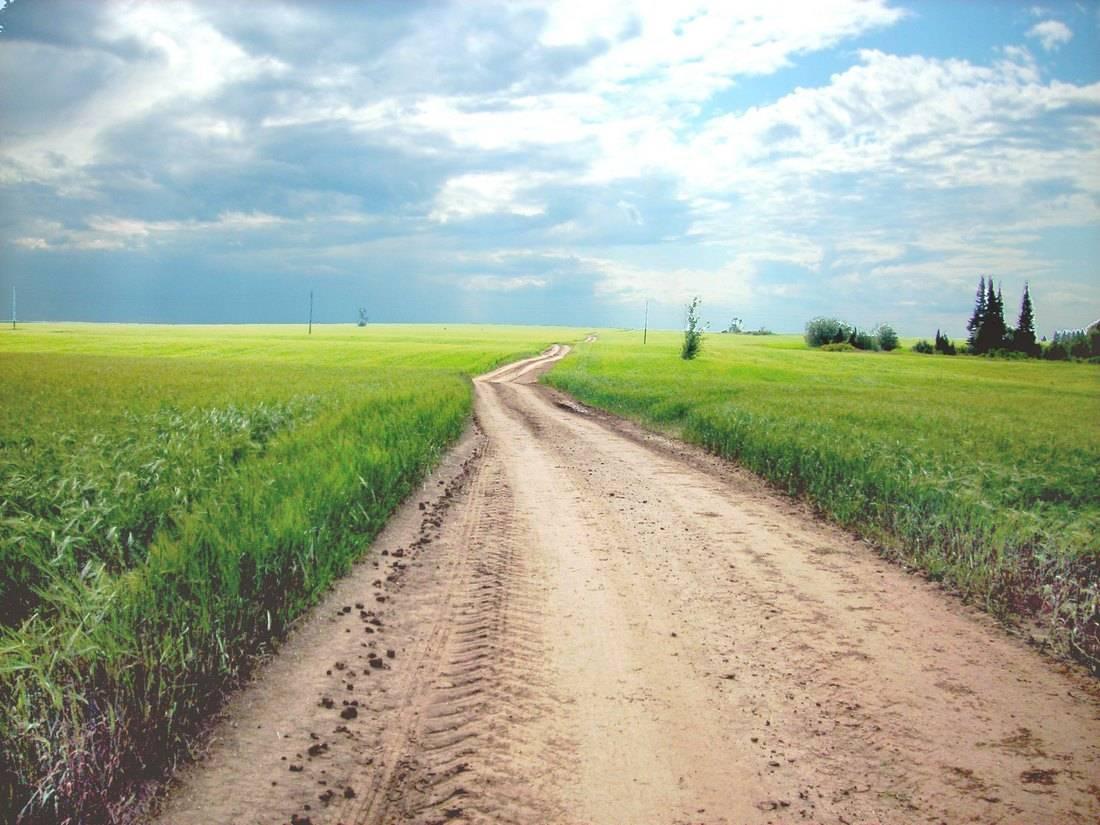 Материалы для строительства дорог: какие лучше использовать