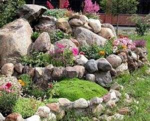 Альпийская горка: ландшафтный дизайн дачи