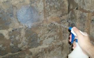 Нужно ли грунтовать стены перед покраской: нужна ли грунтовка